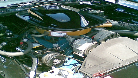 1975 Pontiac Trans Am Engine